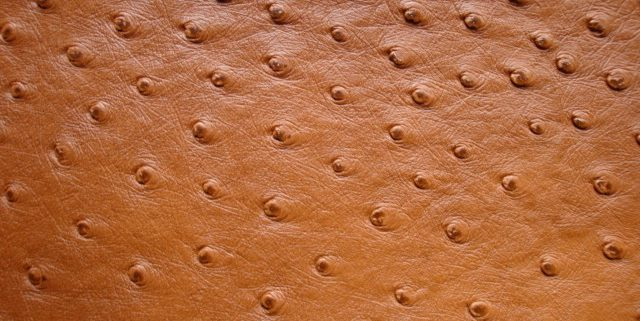 price ostrich leather
