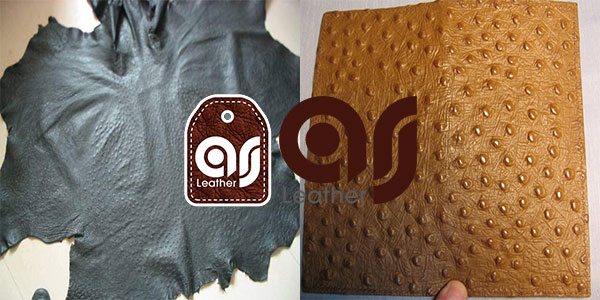 Ostrich leather sale site
