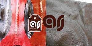 Exports types Leather Ostrich