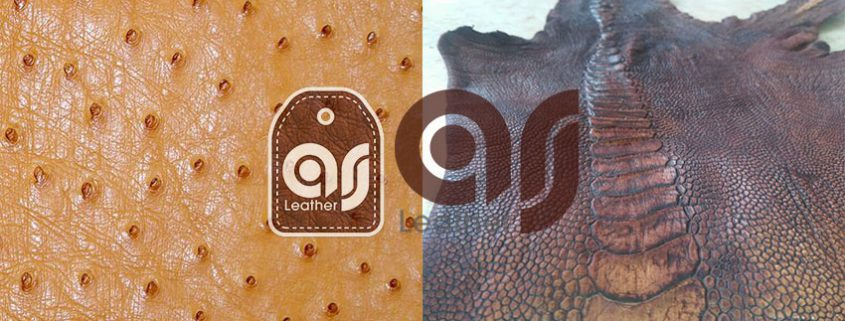 Iranian Ostrich Leather
