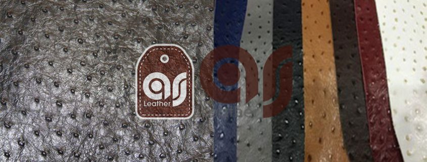 Natural ostrich Leather Export
