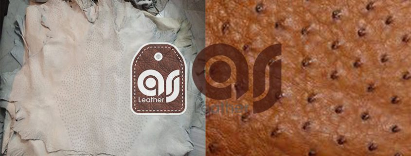 ostrich Natural Leather skin