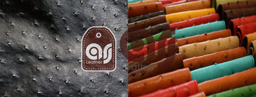 Ostrich Leather Sale