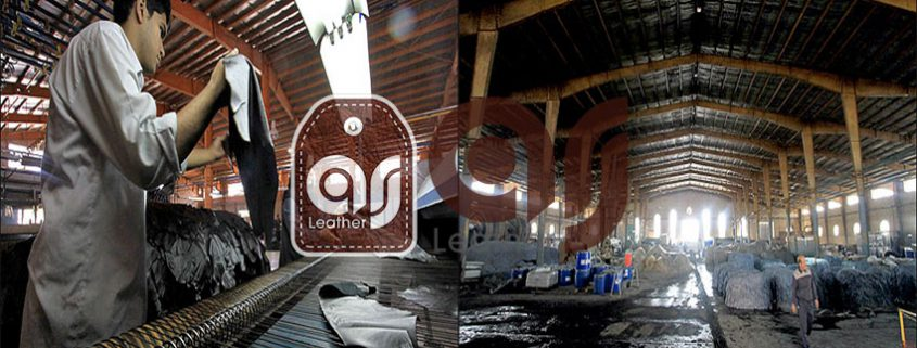 Leather manufacturer company