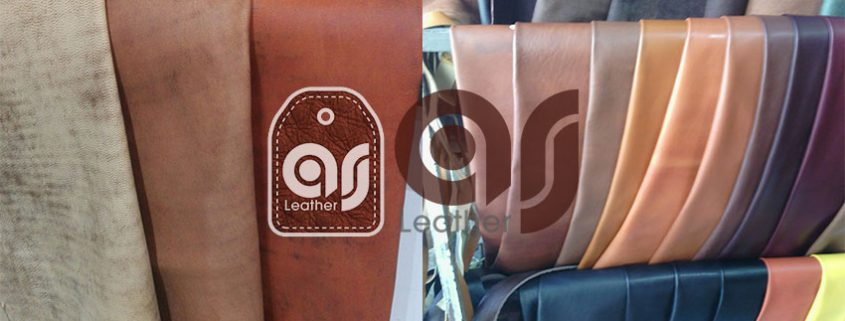 Leather Exports companies