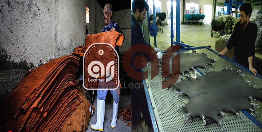 Leather Skin Production Centers
