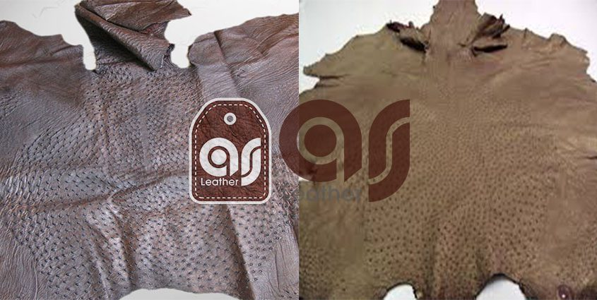 Ostrich Leather Exports to Turkey