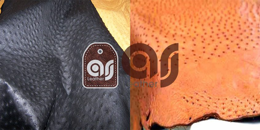 Buy Centers of Ostrich Leather