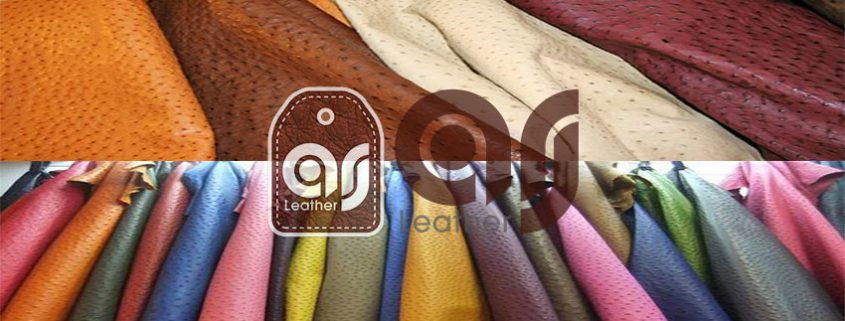 best ostrich leather production