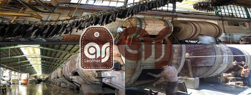 production of natural leather