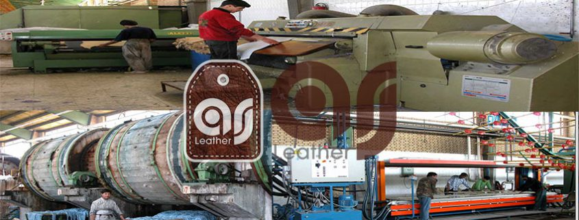 production factory ostrich leather