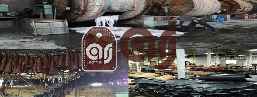 ostrich leather factory
